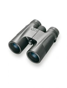 bushnell-powerview-10×42